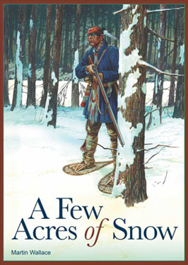 Portada de A few Acres of Snow de Treefrog Games