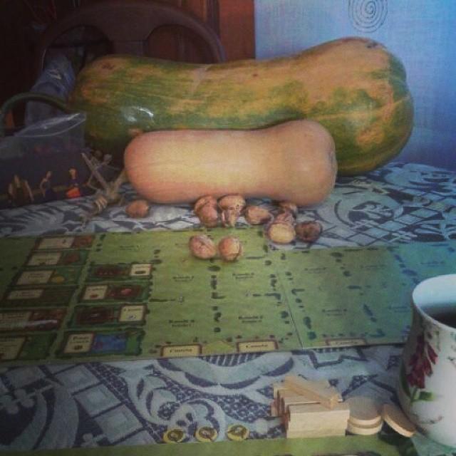 Parece que se nos ha dado muy bien la #partidadefinde al Agrícola #juegosdemesa #boardgames