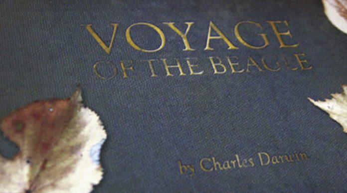 Detalle del libro de reglas de El VIaje del Beagle Expansión para Robinson Crusoe