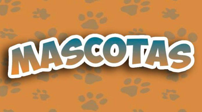 Logotipo de Mascotas