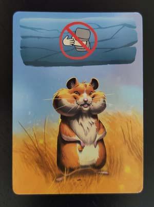 Roedores, carta de Hamster