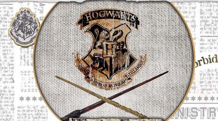Detalle del arte de la portada de Harry Potter: Hogwarts Battle Defensa Contra las Artes Oscuras