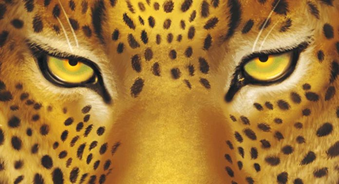 Detalle de la portada de Wild Serengeti